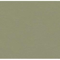 Marmoleum® Click - Rosemary...